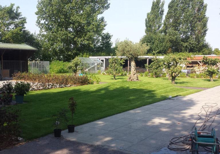 Tuin Nieuwe-Tonge