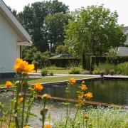 Biotop klassiek zwembad