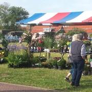 Boerenmarkt tijdens de Burghsedag De Waal Hoveniers