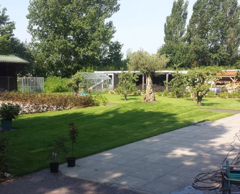 Aanleg tuin Nieuwe-Tonge